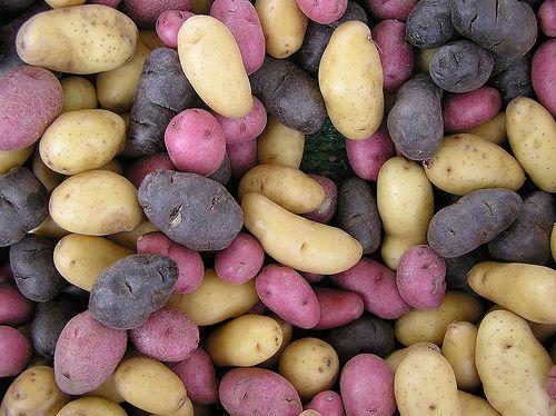 Sokszinű krumpli